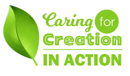 Sustainability-Seekers-Caring-for-Creation