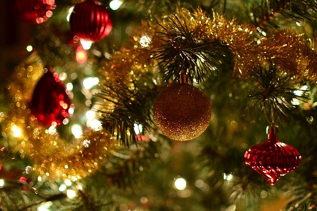 christmas-tree-1100237_640